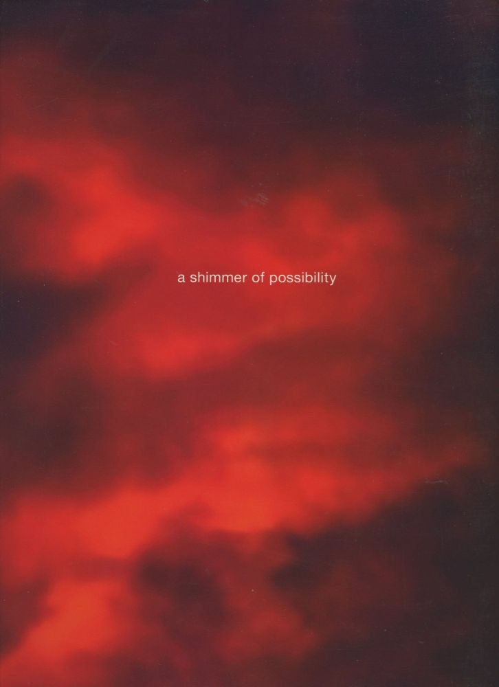 Paul Graham: A Shimmer of Possibility