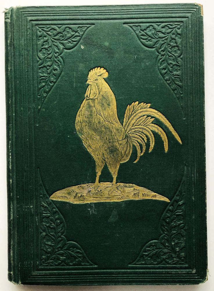 The Life and Adventures of Chanticleer, the Intelligent Rooster - color plates. trans Louise Pollock.