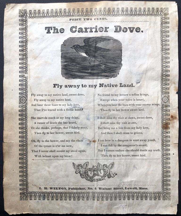The Carrier Dove: Fly away to my Native Land. American song sheet.