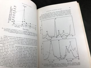 Nucleic Acids: Structure, Biosynthesis and Function -- Symposium organized by the Regional Research Laboratory, Hyderabad, January 16-22, 1964