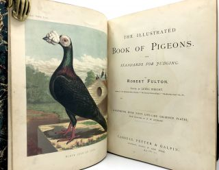 The Illustrated Book of Pigeons, with Standard for Judging... illustrated...