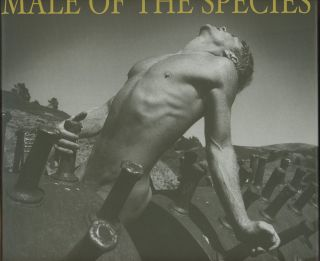 Male of the Species: Four Decades of Photography by Arthur...