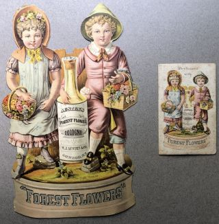 1890s large die-cut advertisement for Austen's Forest Flower Cologne, Oswego NY