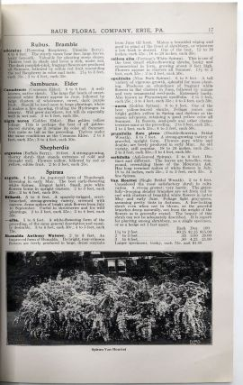 1915 Catalog of Baur Floral Co. products