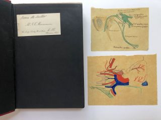 Human Speech (1908) with author's calling card and two color anatomical drawings