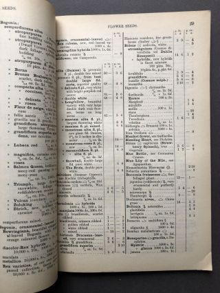 Trade Seed Catalogue 1911 - 1912