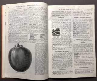Ford's Sound Seeds, 1905 catalog: seeds, bulbs, plants, trees
