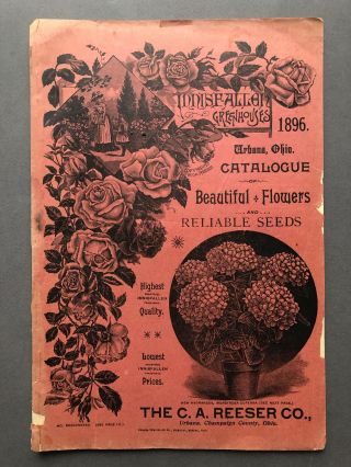 Innisfallen Greenhouses 1896 Urbana Ohio Catalogue of Beautiful Flowers & Reliable Seeds. C. A....