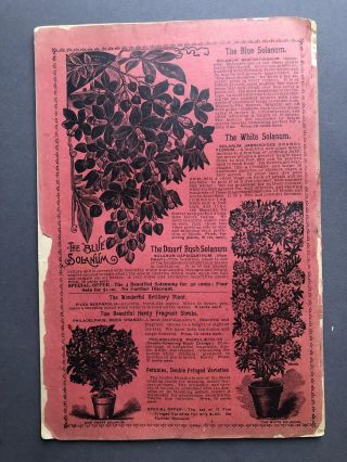 Innisfallen Greenhouses 1896 Urbana Ohio Catalogue of Beautiful Flowers & Reliable Seeds