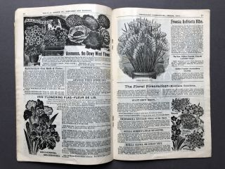 """Innisfallen Greenhouses Urbana Ohio 1898 Illustrated Autumn Catalogue, Beautiful Flowering Buylbs, the Choicest Roses and plants and """"Seeds that Grow"""""""