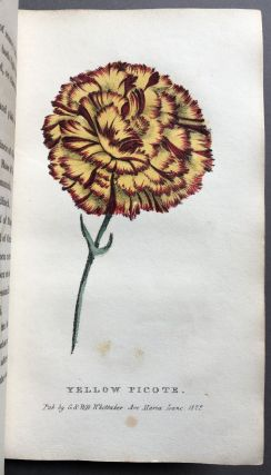 A Concise and Practical Treatise on the Growth and Culture of the Carnation, Pink, Auricula, Polyanthus, Ranunculus, Tulip, Hyacinth, Rose and other Flowers