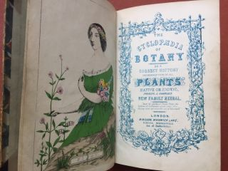 New Cyclopaedia of Botany and Complete Book of Herbs: Forming...
