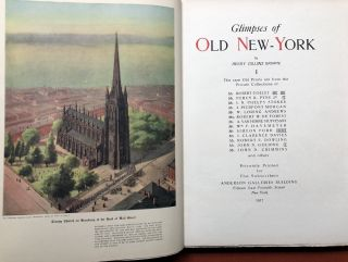 Glimpses of Old New-York