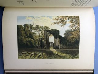 The Ruined Abbeys of Britain