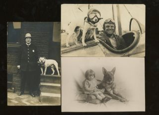 Group of 42 Postcards Featuring Animals and People. Ephemera Zoology, Humans, Lions, Dogs,...